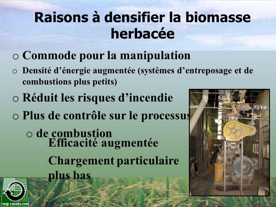 reap-canada.com Raisons à densifier la biomasse herbacée o Commode pour la manipulation o Densité dénergie augmentée (systèmes dentreposage et de comb