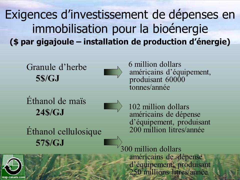 reap-canada.com Exigences dinvestissement de dépenses en immobilisation pour la bioénergie Granule dherbe 5$/GJ Éthanol de maïs 24$/GJ Éthanol cellulo