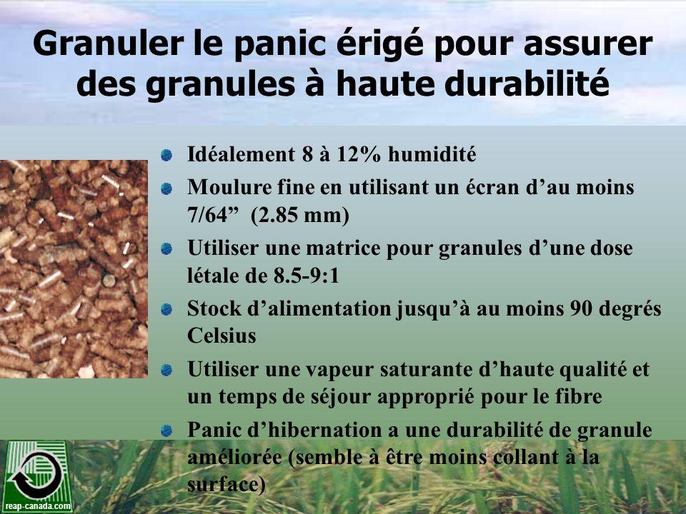 reap-canada.com Granuler le panic érigé pour assurer des granules à haute durabilité Idéalement 8 à 12% humidité Moulure fine en utilisant un écran da