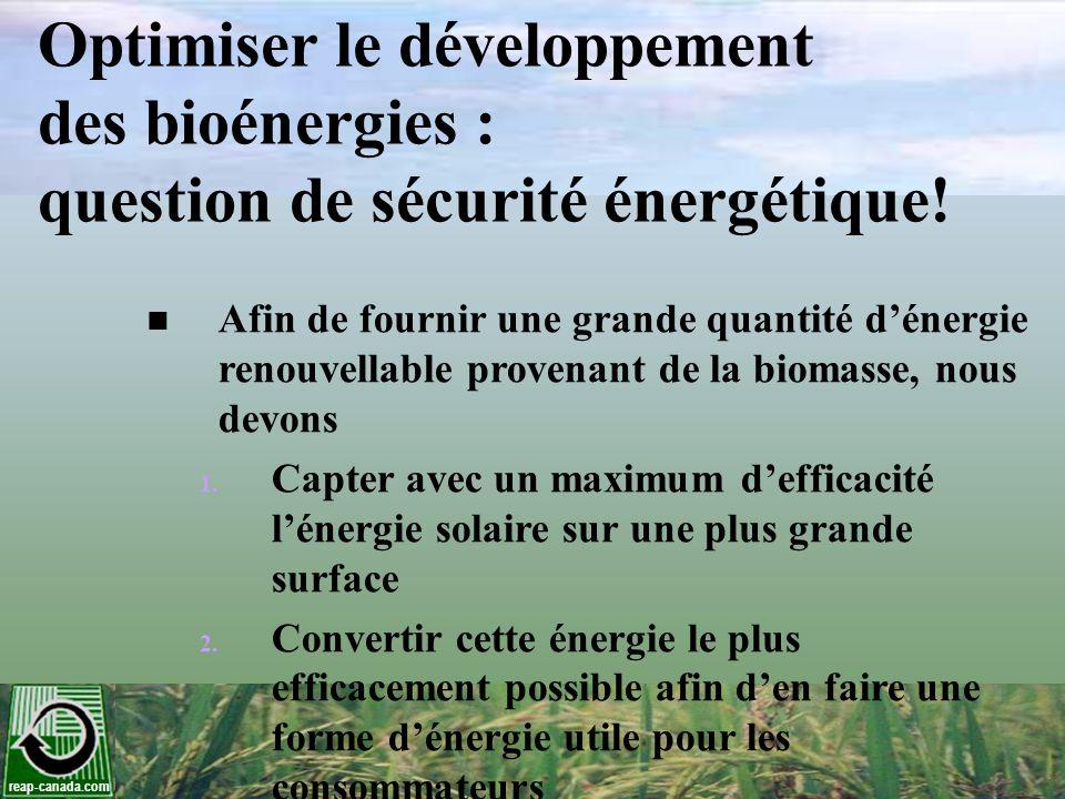 reap-canada.com La bioénergie suit lémergence des systèmes agroalimentaires Il y a 10 000 ans, les nomades passent à la sédentarité à la suite dun épuisement des aliments disponibles aux chasseurs- cueilleurs 10 000 ans plus tard, la bioénergie émerge à la suite de lépuisement des combustibles fossiles Un des plus grands défis de lhumanité est de créer des systèmes de production de bioénergie économiquement et écologiquement efficaces à partir des terres agricoles disponibles