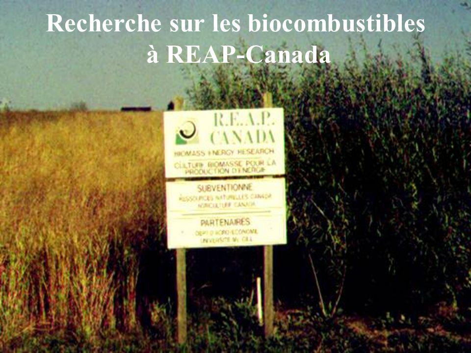 reap-canada.com Variétés du panic érigé pour Canada 2008 (guide pour la dureté et la productivité) Maturité Nombre de jours à devenir mature Nom du cultivar Origine du cultivar (état, grade) Exigences de lunité thermique du maïs Très tôt 95 Dakota Dakota du Nord(46) 2200 Tôt100-105ForestburgDakota du Sud(44)2300 Mi115-120Été de « sunburst » Dakota du Sud(44) Nebraska (41) 2400 125Abri Virginie de louest(40) 2500 Tard130 Caverne aux roches Illinois du sud (38)2600 Très tard150Carthage Caroline du Nord(35) 2700