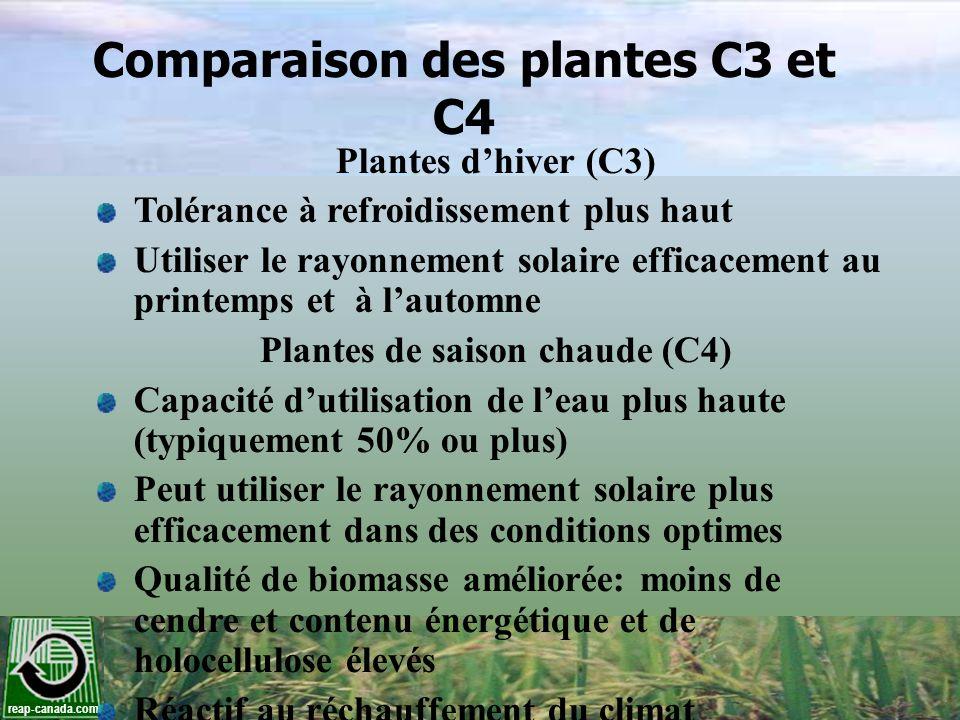 Qualité de la biomasse du panic érigé par rapport aux granules de bois et de la paille de blé Source : Samson et al., 2005 TeneurGranules de bois Paille de bléPanic érigé Récolté à lautomne Récolté au printemps Énergie (GJ/t)20,318,6-18,818,2-18,819,1 Cendres (%)0,64,54,5-5,22,8-3,2 N (%)0,300,700,460,33 K (%)0,051,000,38-0,950,06 Cl (%)0,010,19-0,51n/a