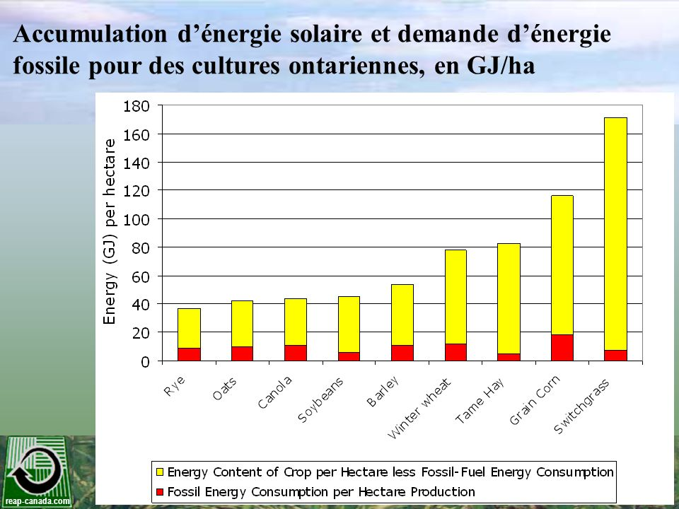 reap-canada.com Teneur en cendres et énergie du panic érigé Composante de la plante % cendres Contenu en énergie(GJ/ODT ) Tiges 1,03 %19,6 Graines 2,38 %19,5 Gaines des feuilles 3,07 %18,7 Feuilles 6,98 %18,4 Globalement, la teneur moyenne en cendres du panic érigé était de 2,75 % et 3,25 % respectivement sur des sites sablonneux et argileux