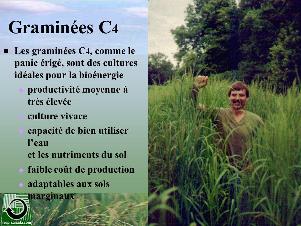 reap-canada.com Terres agricoles pour la culture énergétique en Ontario et au Québec Utilisation des terres Territoire (000 ha) Territoire pour bio- combustib les* (000 ha) Rendement potentiel des herbages ** (000 tonnes) Rendement potentiel total des herbages (000 tonnes) Ontario Terre cultivée 2,2544504,1928,883 Fourrages 1,2615044,691 Québec Terre cultivée 9401881,7485,221 Fourrages 9333733,473 Ontario & Québec Total14,104 * 20% des terres cultivées estimé et 40% de terres de fourrage converti à la production bioénergique ** Rendement hypothétique de 9.3 tonnes/hectare