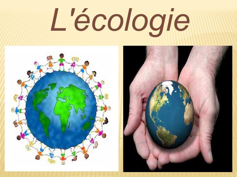 Esquema ConceptualFrance Argentine Introduction Avant et après Conflits écologiquesConflits écologiques 5 Conseils