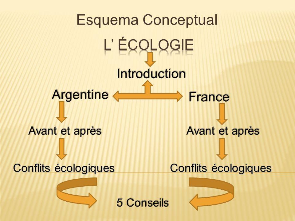 Qu est-ce que l écologie.