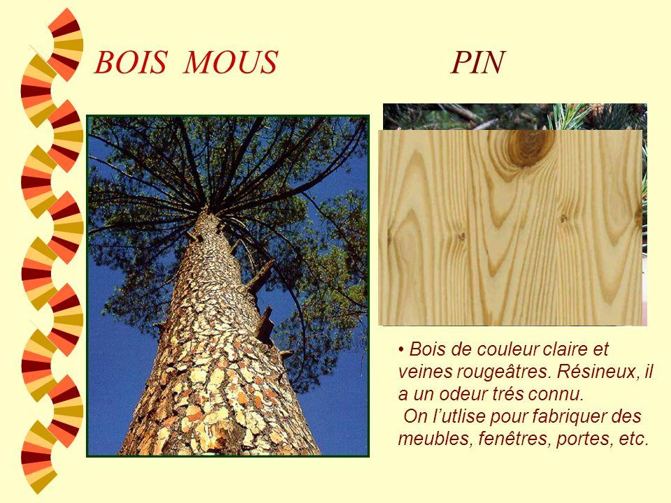 BOIS MOUS SAPIN Bois assez blanc avec des veines jaunes. On peut lemployer pour fabriquer des instruments grâce à sa bonne acoustique.