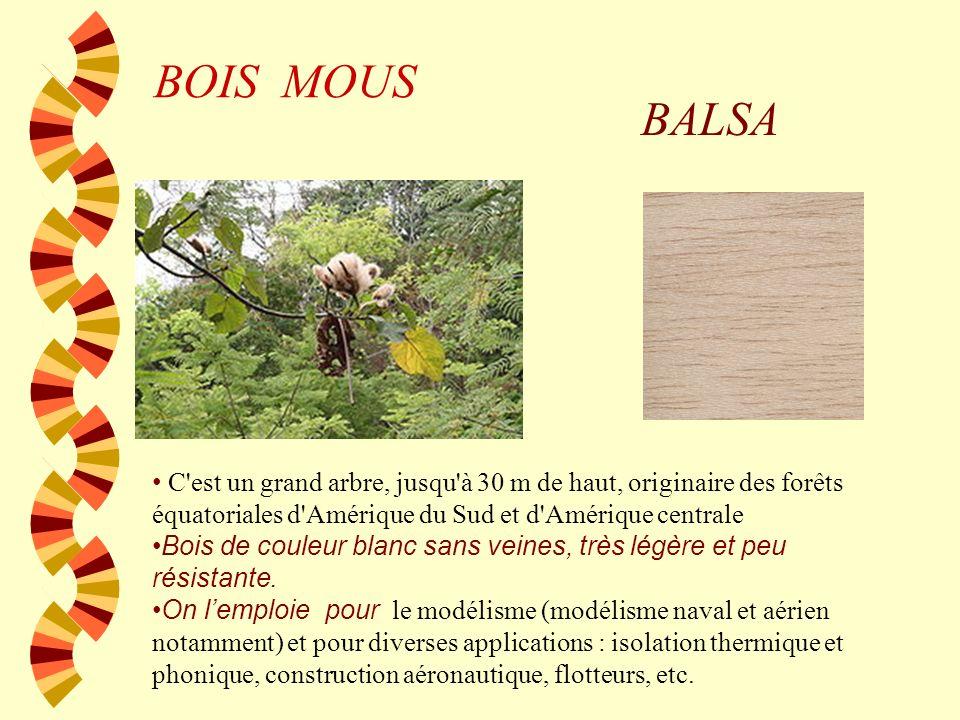 BOIS MOUSPIN Bois de couleur claire et veines rougeâtres. Résineux, il a un odeur trés connu. On lutlise pour fabriquer des meubles, fenêtres, portes,