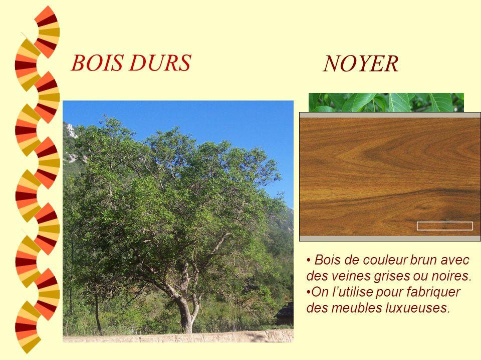 BOIS MOUS PEUPLIER Bois jaunâtre et très légère. On lutilise habituellement pour des emballages où pâte de papier.