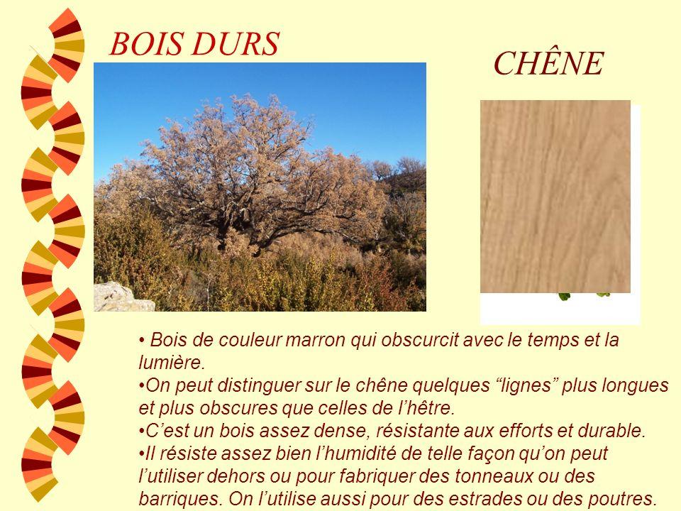 BOIS DURS HÊTRE Bois de couleur crème clair avec des petites gouttelettes de pluie un peu plus obscures. Il travaille bien à compression Il na presque