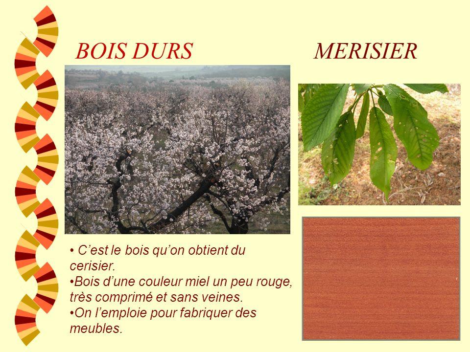 BOIS DURS CHÊNE Bois de couleur marron qui obscurcit avec le temps et la lumière. On peut distinguer sur le chêne quelques lignes plus longues et plus