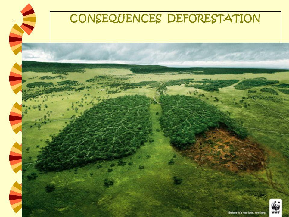 CONSEQUENCES DEFORESTATION Augmentation des émissions de CO2 Augmentation de lérosion Désertification Réduction de la biodiversité