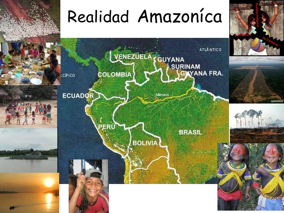 LAMAZONIE En Amérique du sud, lAmazonie est un vaste bassin de 6 millions de kilomètres carrés (dont la moitié appartient au Brésil), qui sétend des plateaux de Guyane à la chaîne des Andes et au Brésil septentrional et traverse 8 pays : Brésil, Bolivie, Colombie, Équateur, Guyana, Pérou, Suriname et Venezuela.