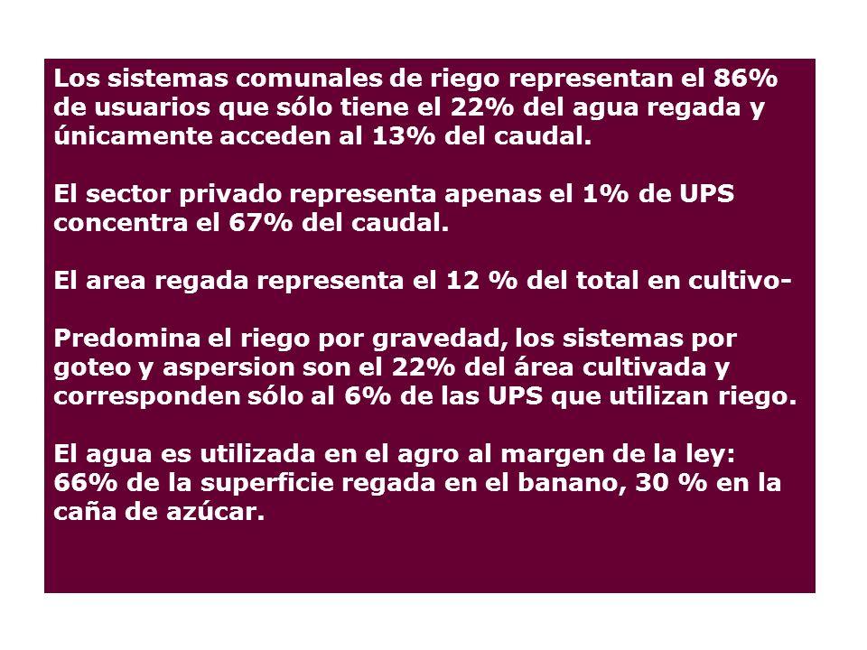Los sistemas comunales de riego representan el 86% de usuarios que sólo tiene el 22% del agua regada y únicamente acceden al 13% del caudal.