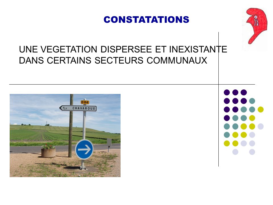 CONSTATATIONS UNE VEGETATION DISPERSEE ET INEXISTANTE DANS CERTAINS SECTEURS COMMUNAUX
