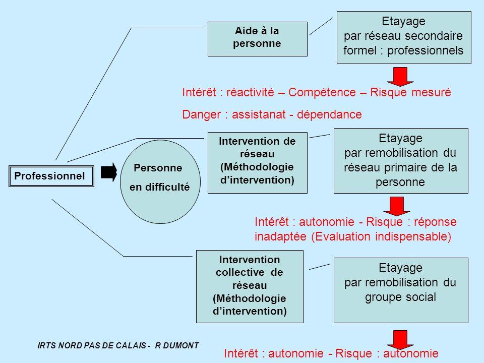 Professionnel Aide à la personne Personne en difficulté Intervention de réseau (Méthodologie dintervention) Etayage par réseau secondaire formel : pro
