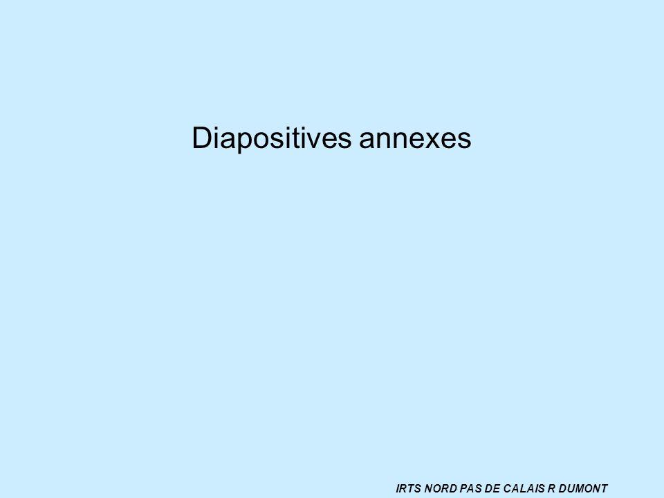 Diapositives annexes IRTS NORD PAS DE CALAIS R DUMONT
