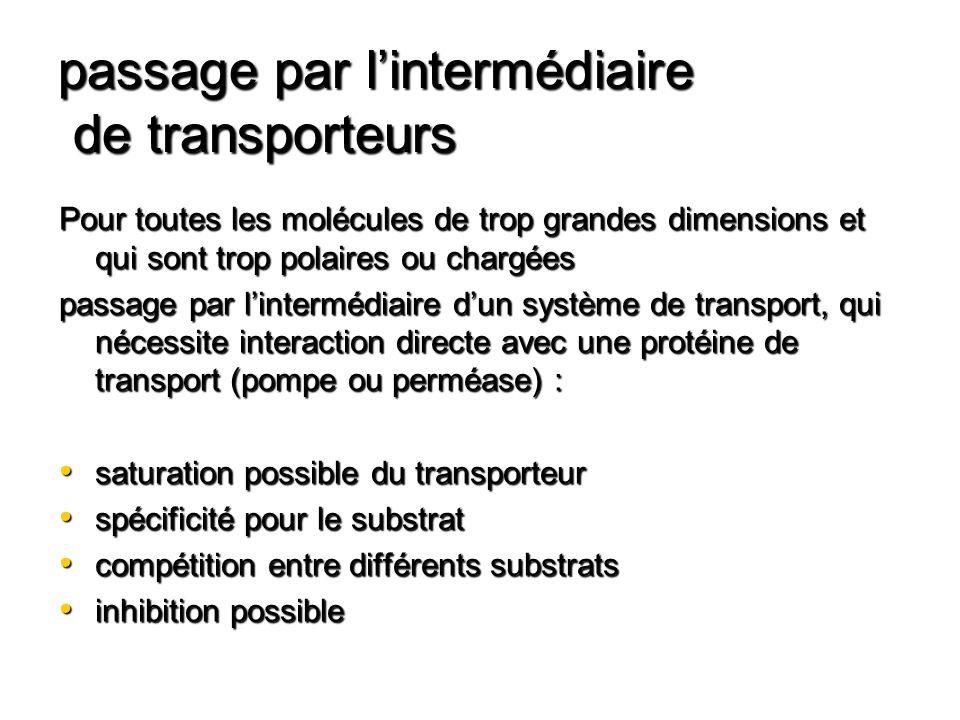 passage par lintermédiaire de transporteurs Pour toutes les molécules de trop grandes dimensions et qui sont trop polaires ou chargées passage par lin
