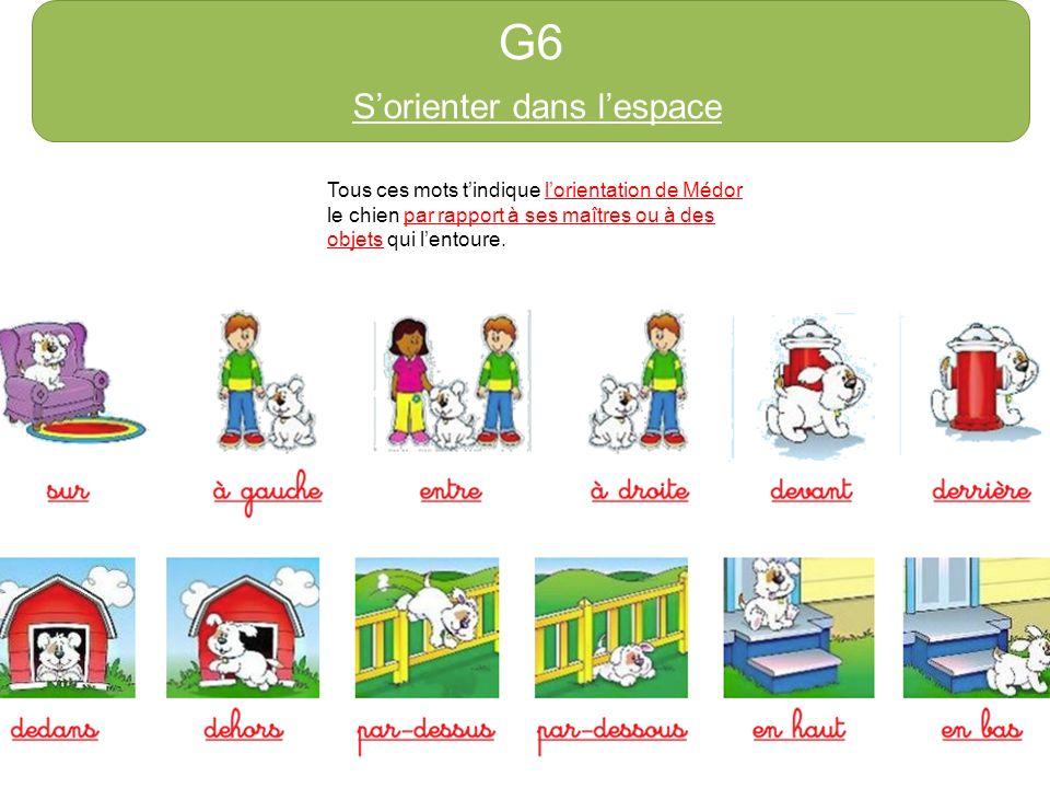 G6 Sorienter dans lespace Tous ces mots tindique lorientation de Médor le chien par rapport à ses maîtres ou à des objets qui lentoure.