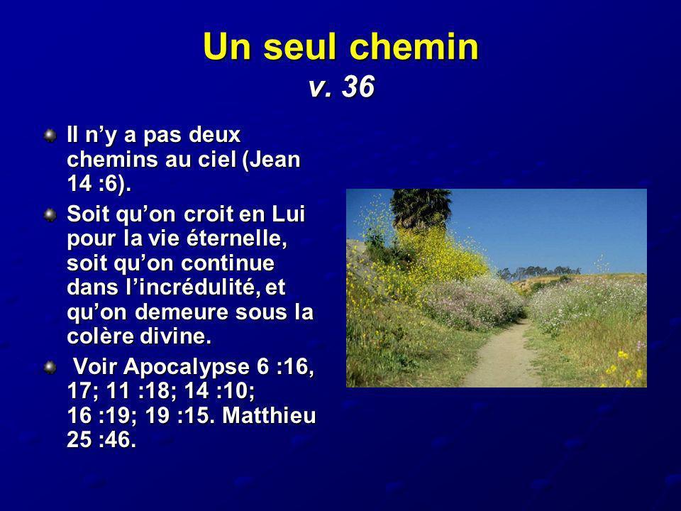 Un seul chemin v. 36 Il ny a pas deux chemins au ciel (Jean 14 :6). Soit quon croit en Lui pour la vie éternelle, soit quon continue dans lincrédulité