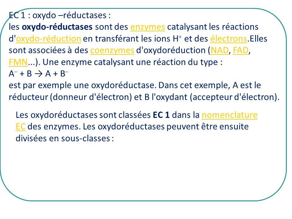 EC 1 : oxydo –réductases : les oxydo-réductases sont des enzymes catalysant les réactions d'oxydo-réduction en transférant les ions H + et des électro