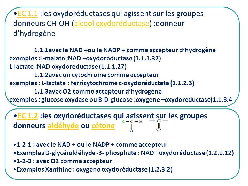 1.1.1avec le NAD +ou le NADP + comme accepteur dhydrogène exemples :L-malate :NAD –oxydoréductase (1.1.1.37) L-lactate :NAD oxydoréductase (1.1.1.27)