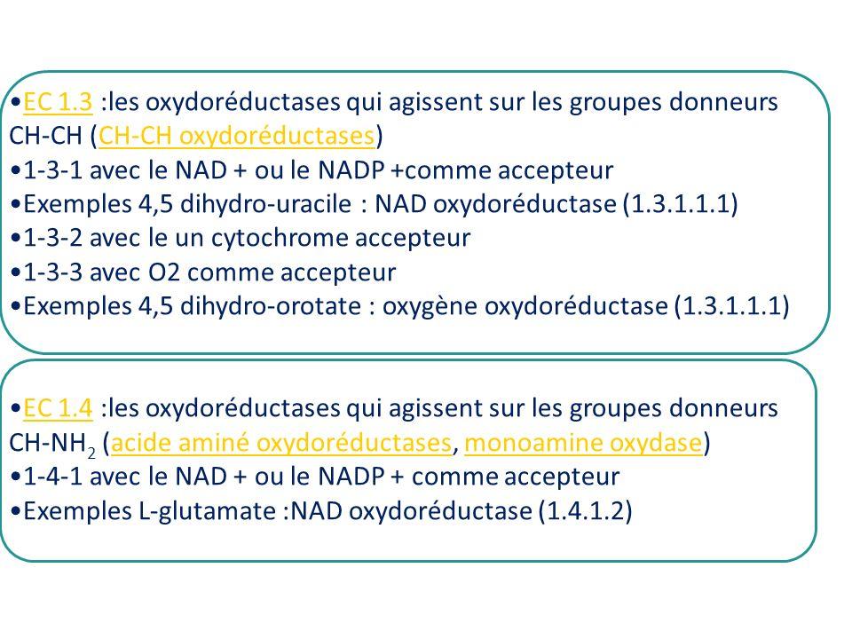 EC 1.3 :les oxydoréductases qui agissent sur les groupes donneursEC 1.3 CH-CH (CH-CH oxydoréductases)CH-CH oxydoréductases 1-3-1 avec le NAD + ou le N