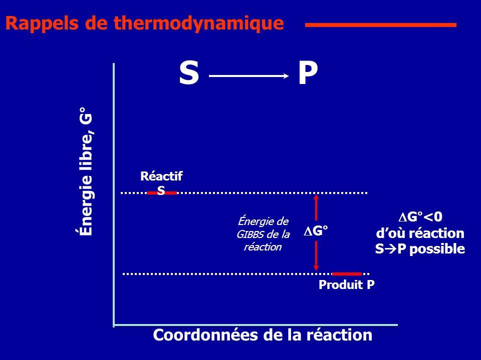 Coordonnées de la réaction Énergie libre, G° Réactif S Produit P G°<0 doù réaction S P possible SP Énergie de G IBBS de la réaction G° Rappels de ther