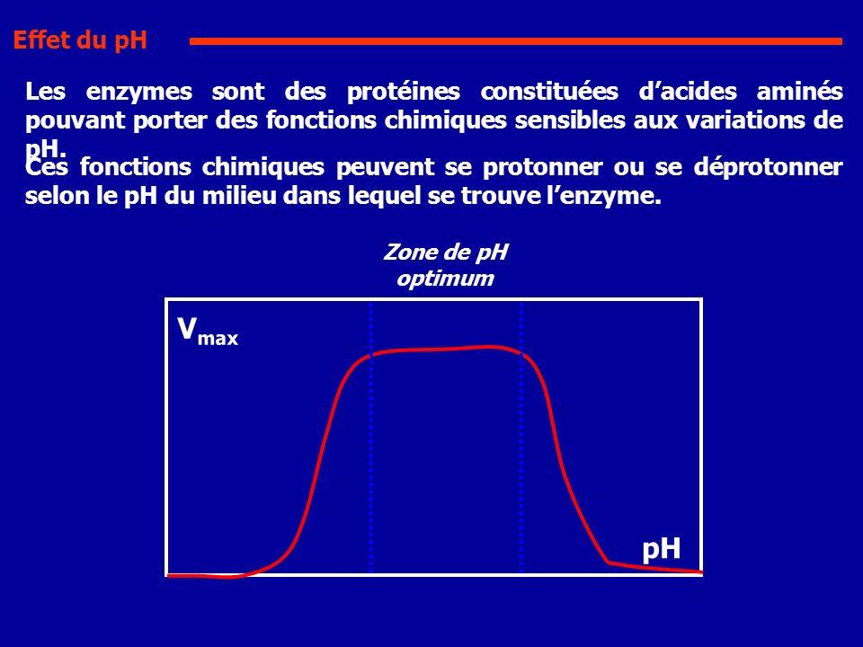 Les enzymes sont des protéines constituées dacides aminés pouvant porter des fonctions chimiques sensibles aux variations de pH. Ces fonctions chimiqu