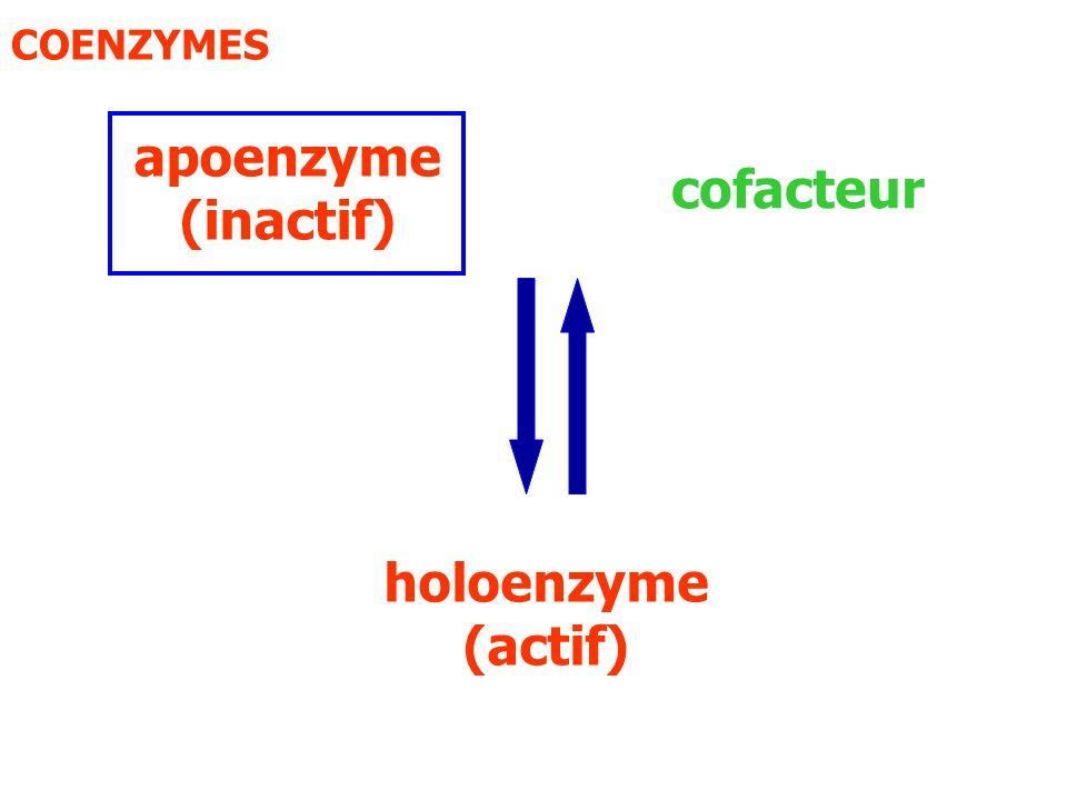 Biotine Carboxylation Alkylation Coenzyme A Transfert de groupe acyl Acide folique Coenzymes à nicotinamide Oxydo-réduction Phosphate de pyridoxal CofacteurRéaction impliquée Coenzymes flaviniquesOxydo-réduction Tétrahydrofolate Thiamine pyrophosphate Coenzyme à cobalamine ( vit B12 ) Transfert de groupe acyl Transfert de groupe amino Transfert de groupe à un carbone Transfert de groupe aldéhyde