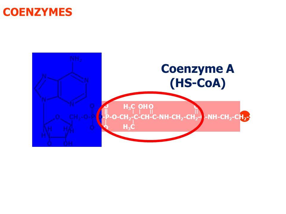 EC 2 :Transférases : une transférase est une enzyme dont le rôle est de catalyser le transfert d un groupe fonctionnel (par un exemple un groupe éthyle ou phosphate) d une molécule (appelée donneur) à une autre (appelée accepteur).
