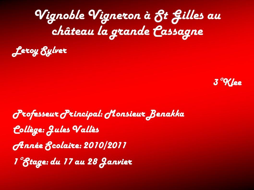 Vignoble Vigneron à St Gilles au château la grande Cassagne Leroy Sylver 3°Klee Professeur Principal: Monsieur Benakka Collège: Jules Vallès Année Sco