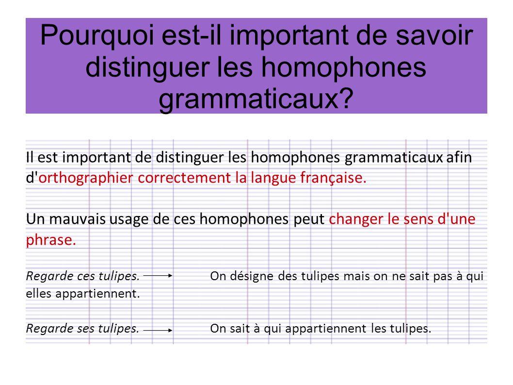 Comment distinguer les homophones grammaticaux .Il ne faut pas confondre ce et se.