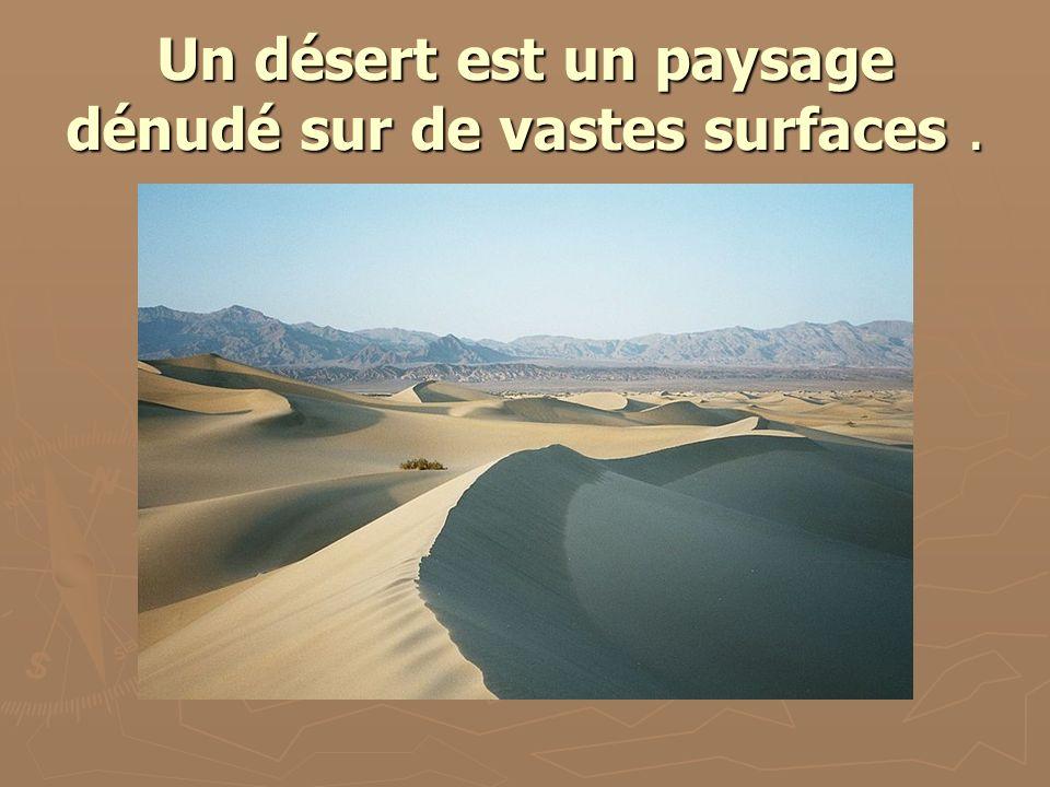 Un désert est un paysage dénudé sur de vastes surfaces.