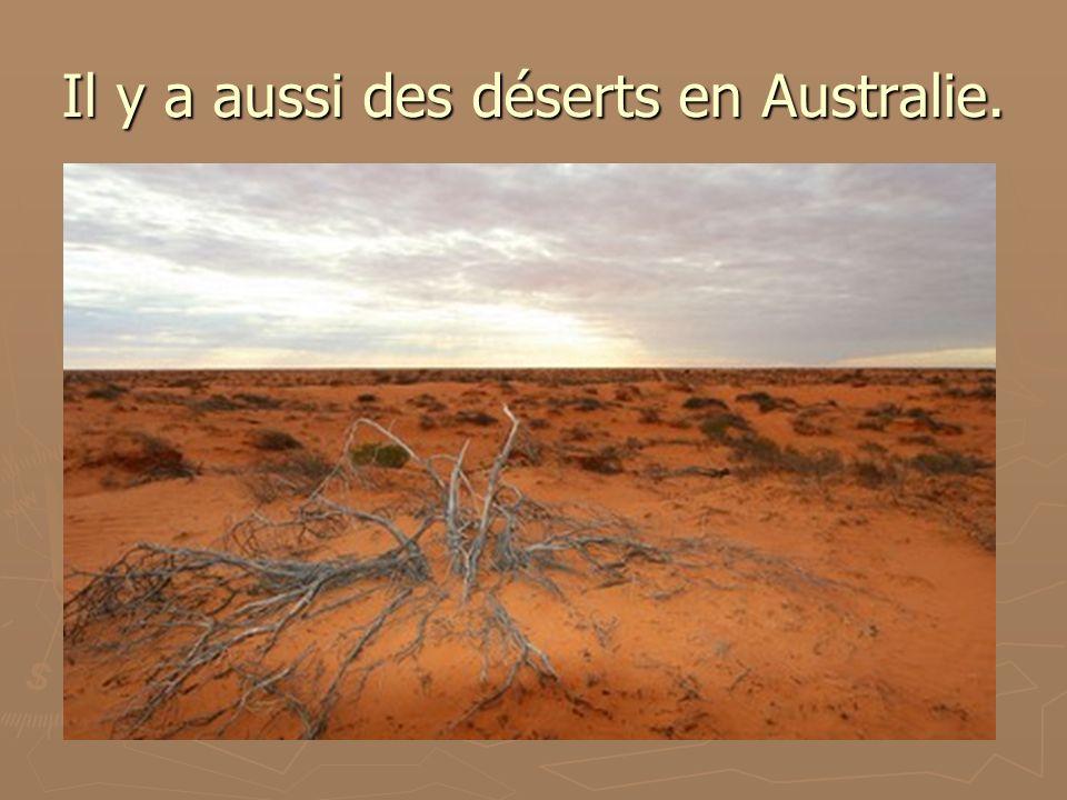 Il y a aussi des déserts en Australie.