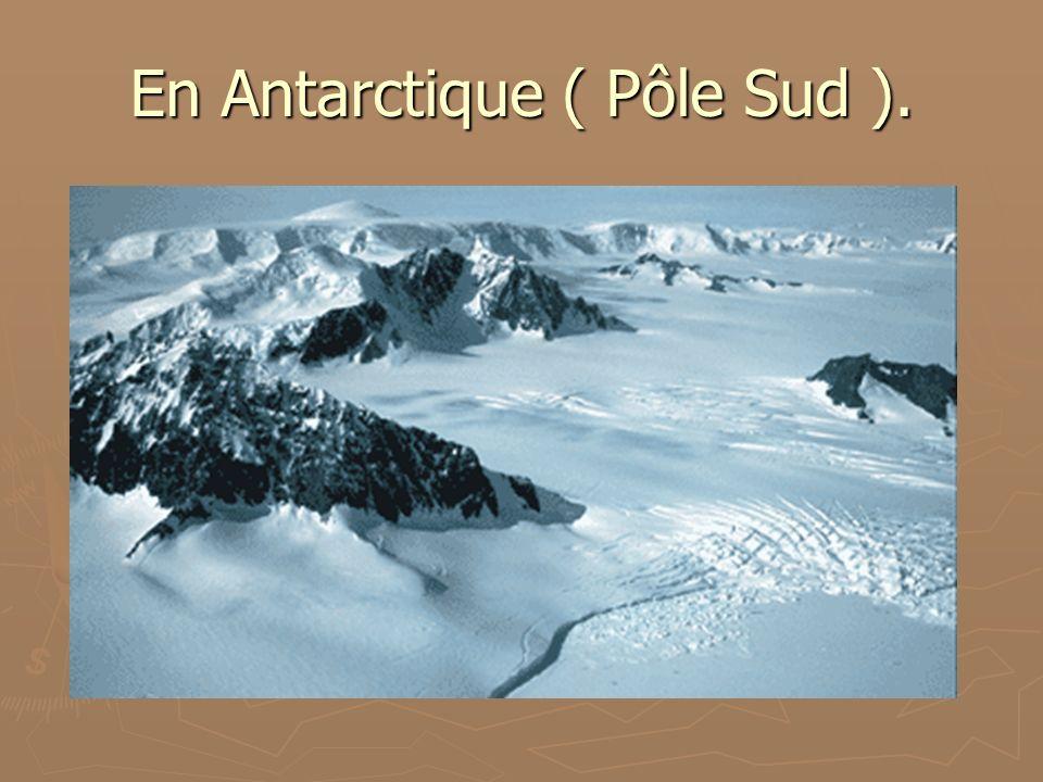 En Antarctique ( Pôle Sud ).