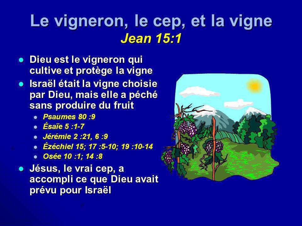 Le vigneron, le cep, et la vigne Jean 15:1 Dieu est le vigneron qui cultive et protège la vigne Dieu est le vigneron qui cultive et protège la vigne I