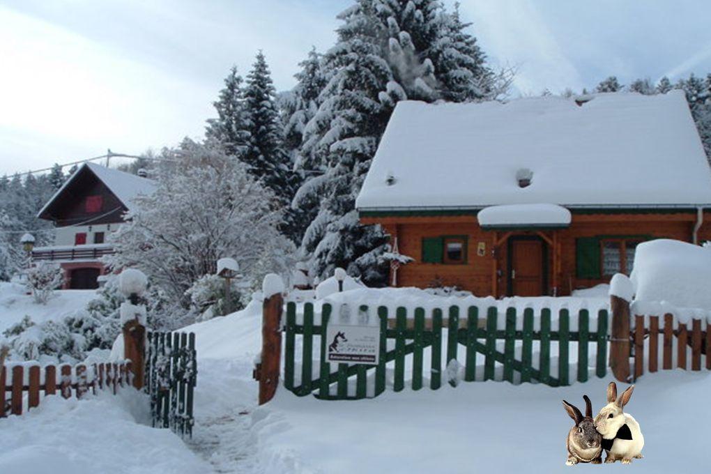 Aimons la neige ! Sinon, nous risquerions de briser notre équilibre poétique et d'oublier notre condition humaine. Francis Bossus