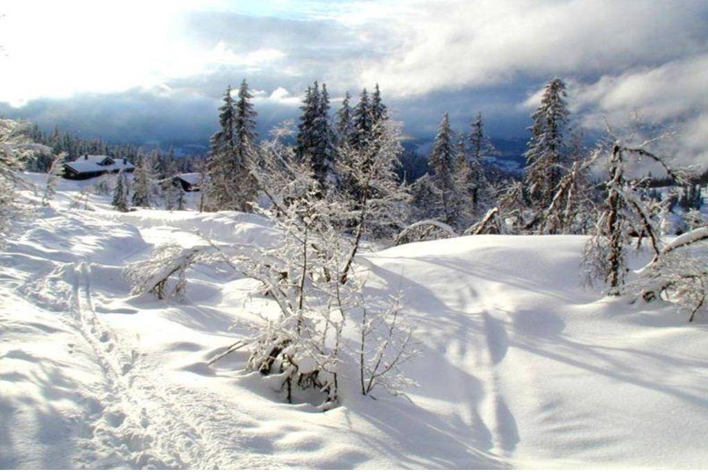 Le bonheur est comme la neige : il est doux, il est pur et il font Claire Malesset