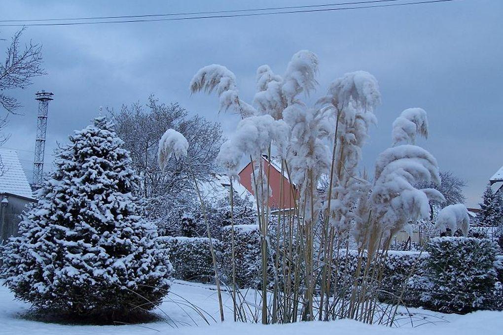La neige possède ce secret de rendre au coeur en un souffle la joie naïve que les années lui ont impitoyablement arrachée. Antonine Maillet