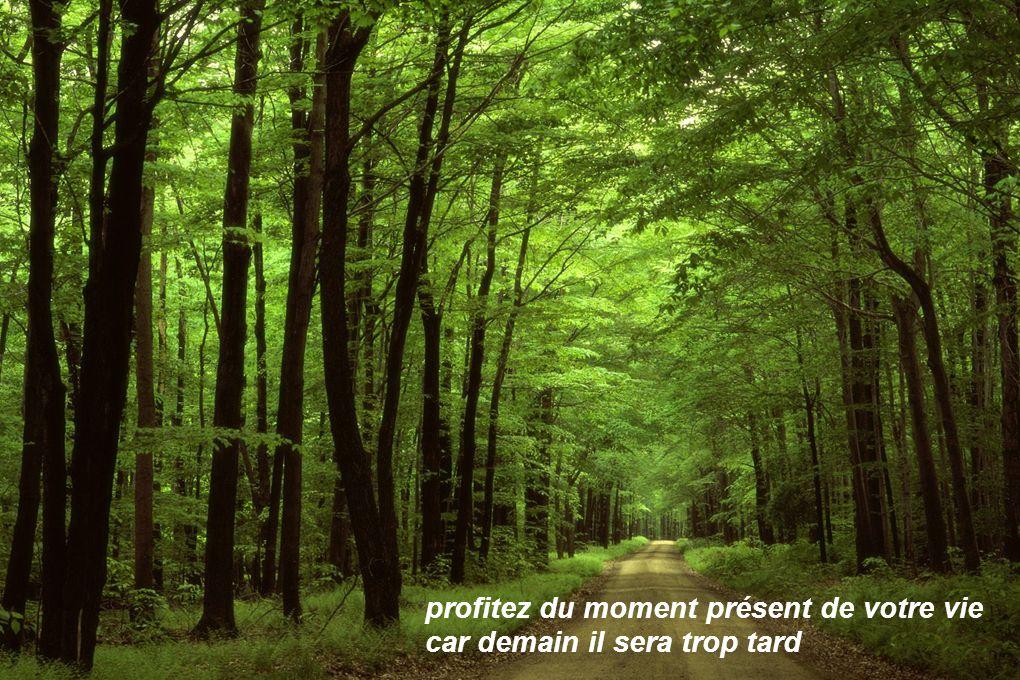 profitez du moment présent de votre vie car demain il sera trop tard