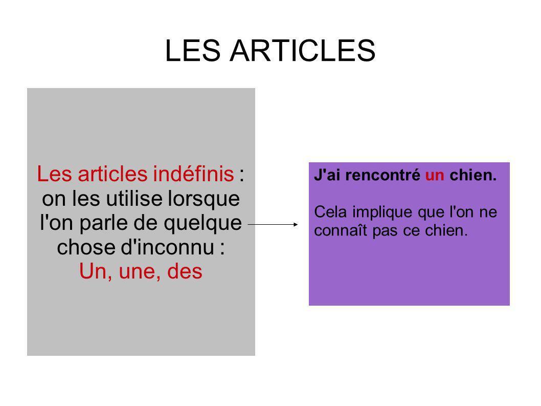 Quand utilise-t-on un article indéfini ? Cite un exemple d article indéfini ?