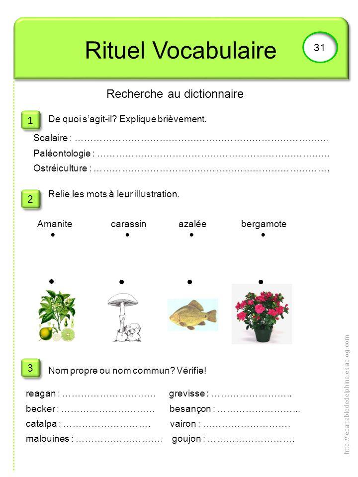 Rituel Vocabulaire 31 1 1 2 2 3 3 De quoi sagit-il? Explique brièvement. Relie les mots à leur illustration. Nom propre ou nom commun? Vérifie! Recher