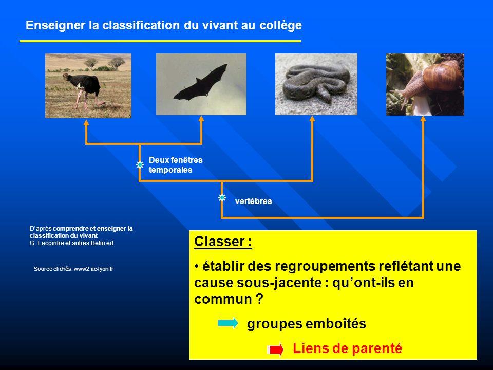 6ème5ème4ème3ème Ébauche de la construction de la classification scientifique On détermine et on classe les êtres vivants en groupes emboîtés définis uniquement à partir dattributs quils possèdent en commun.