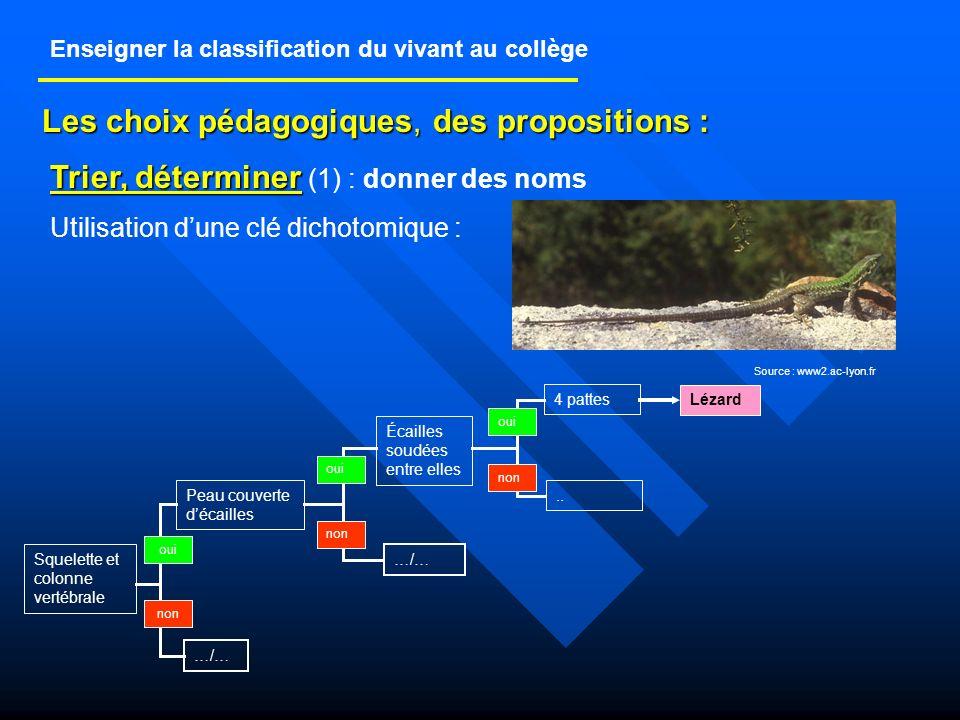 CLASSE DE 6ème (1) Découvrir et utiliser la classification actuellement retenue par les scientifiques qui traduit les relations de parenté entre les êtres vivants, lhistoire évolutive.
