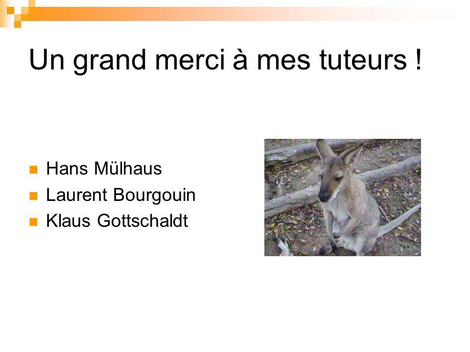 Un grand merci à mes tuteurs ! Hans Mülhaus Laurent Bourgouin Klaus Gottschaldt