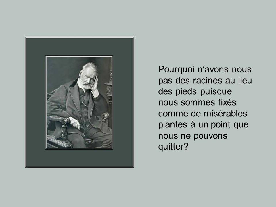 Ce diaporama ne présente pas une biographie de Victor Hugo, mais il le fait plutôt apparaître à travers certains extraits particulièrement significati