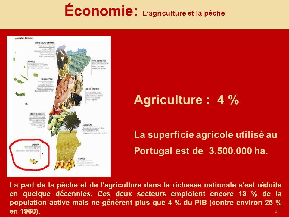 24 Agriculture : 4 % La superficie agricole utilisé au Portugal est de 3.500.000 ha. Économie: Lagriculture et la pêche La part de la pêche et de l'ag