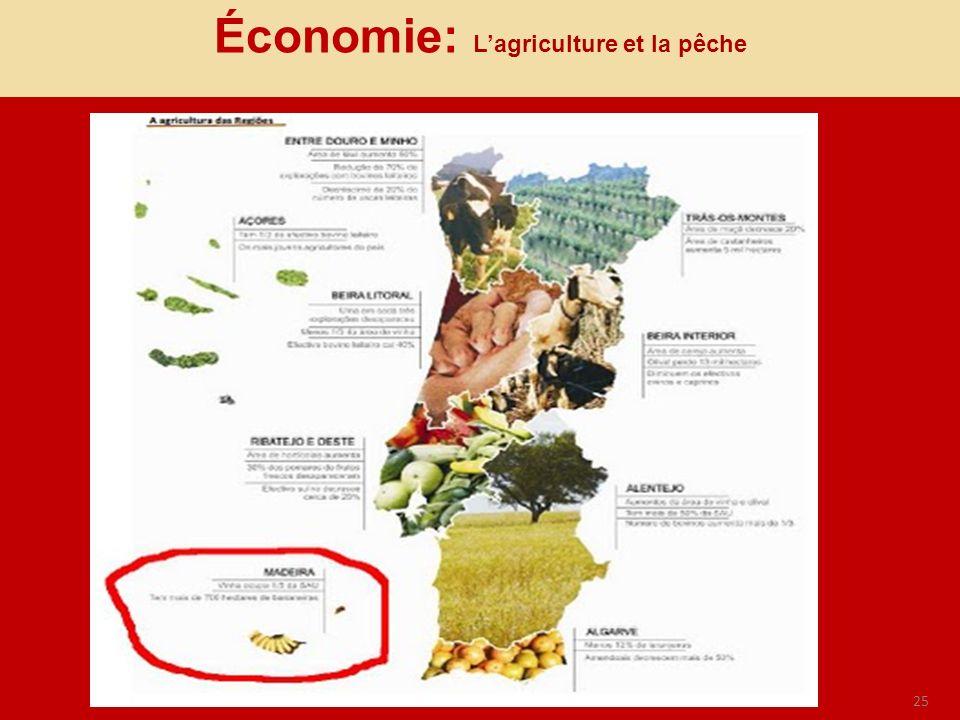 25 Économie: Lagriculture et la pêche