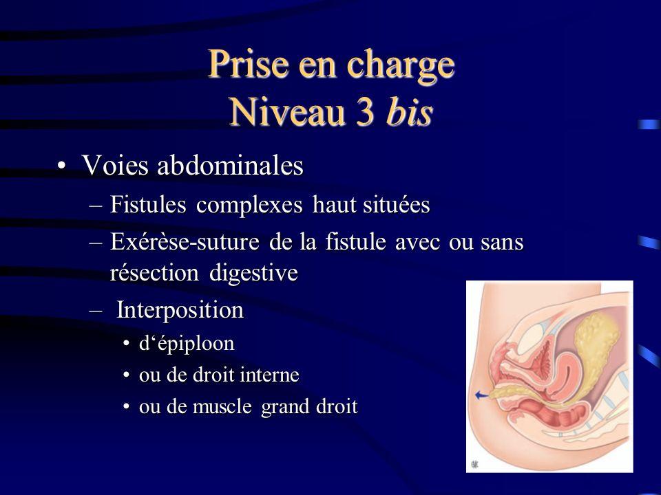 Prise en charge Niveau 3 bis Voies abdominalesVoies abdominales –Fistules complexes haut situées –Exérèse-suture de la fistule avec ou sans résection digestive – Interposition dépiploondépiploon ou de droit interneou de droit interne ou de muscle grand droitou de muscle grand droit